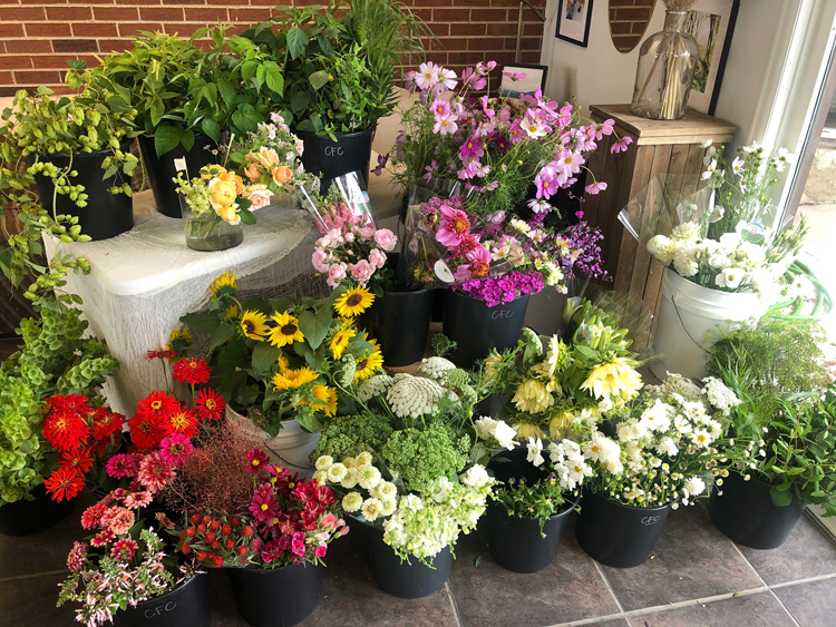 Colorado Flower Collective - Bunches of flowers from farmers to florists