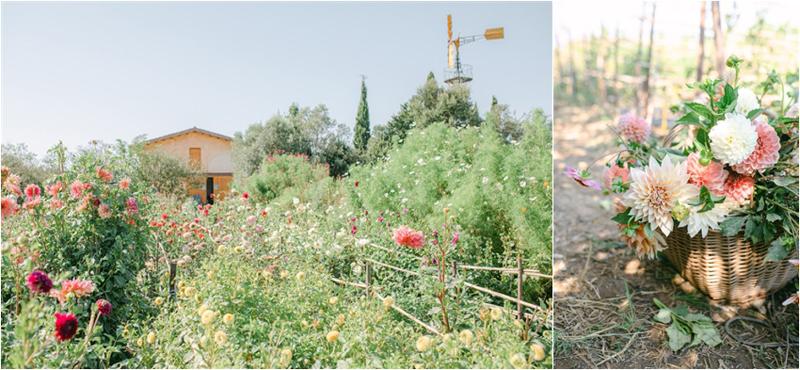 Lena Karelova Photography - Horta De Viola
