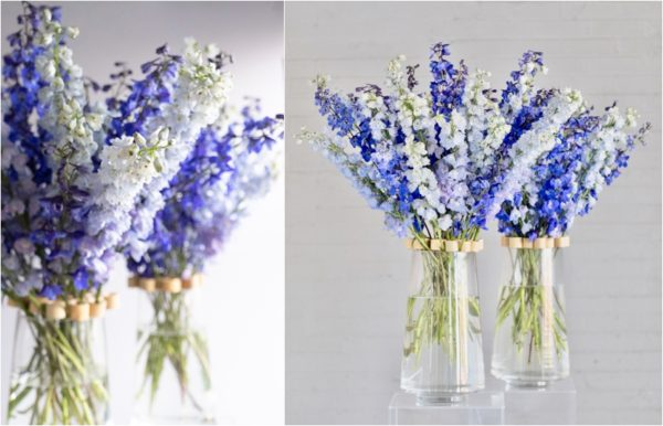 Joseph Massie - How To Tutorial Floral Design Delphinium Arrangement